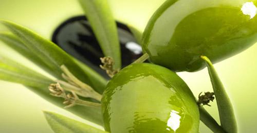 exports_olive_turkey